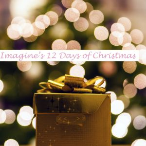 12 Days Of Christmas | Starts 08.12.17